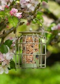 Кормушка для птиц с защитой от белок Compact для дачного участка от Smart Garden фото