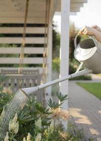 Оцинкованная садовая лейка для цветов с длинным носиком OZ77 Esschert Design фото