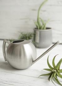 Дизайнерская металлическая лейка шар для полива комнатных растений TG295 Esschert Design фото