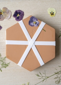 Керамический пресс для цветов в микроволновой печи FH015 Esschert Design фото