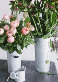 Оцинкованные вазы для цветов Esschert Design OZ32 фото.jpg
