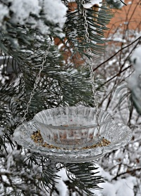 Кормушка для птиц стеклянная FB308 Esschert Design картинка