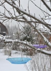 Стеклянная кормушка-тарелка для птиц FB331 Blue Esschert Design фото