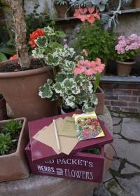 Контейнер с крышкой для хранения семян Burgon & Ball