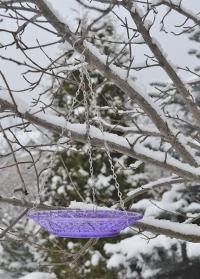 Стеклянная декоративная кормушка для птиц FB331 Violet Esschert Design фото