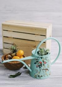 Дизайнерская красивая лейка для комнатных цветов Flora and Fauna Burgon & Ball фото