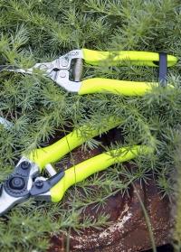 Ножницы садовые флуоресцентные Florabrite  Burgon & Ball