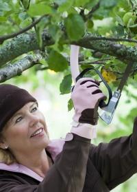 Садовые женские перчатки из искусственной кожи RH11 Classic GardenGirl фото