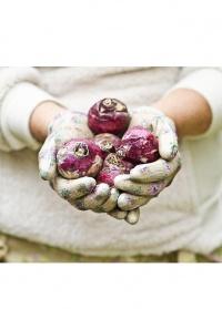 Садовые перчатки с нитрилом для дачи, огорода и сада GGRRH Roses Collection GardenGirl фото