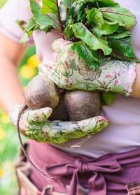 Перчатки с нитрилом для сада и огорода Chelsea Collection GardenGirl RRH30 фото