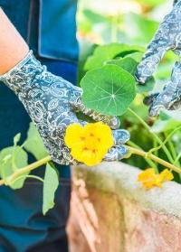 Перчатки с нитрилом для садоводов и дачников Denim Collection RRH12 GardenGirl фото