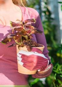 Перчатки женские садовые из козьей кожи Classic Collection GardenGirl AL02 фото