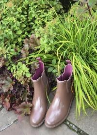 Ботинки-челси резиновые GardenGirl