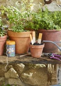 Веревка джутовая для сада огорода в декоративном контейнере Passiflora Burgon & Ball фото