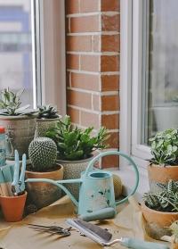 Металлическая дизайнерская лейка для комнатных растений Chrysanthemum Burgon & Ball фото