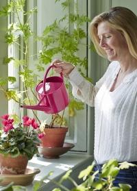 Лейка для полива комнатных растений 1,7 л. Rasberry by Sophie Conran Burgon & Ball фото