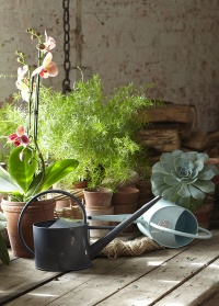 Лейка для комнатных растений 1,7 л. Blue by Sophie Conran Burgon & Ball
