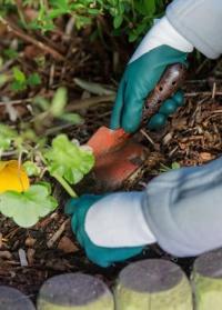 Перчатки садовые с нитрилом Plantation Green AJS-Blackfox