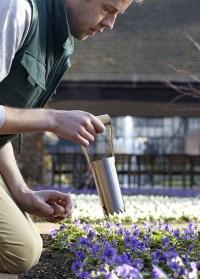 Посадочный инструмент для луковичных, клубней и рассады Burgon & Ball