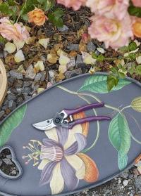 Секатор Passiflora в подарочной упаковке - садовый инструмент для ухода за садом Burgon & Ball фото
