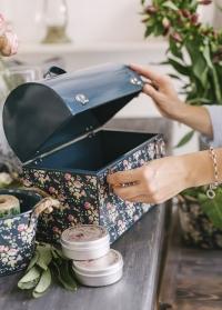Кейс металлический для садовых инструментов B7061 Flower Girl Briers фото.jpg