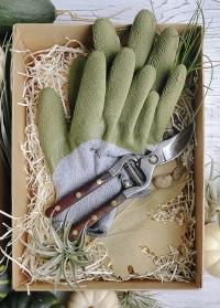 Садовые теплые перчатки для дачи Cosy Fresh Green Briers фото