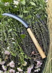 Серп садовый для трав и цветов GTH/WTS Burgon & Ball картинка