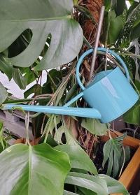 Лейка для полива комнатных растений 1,7 л Sea Green Burgon Ball фото