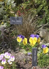Набор табличек для маркировки растений Esschert Design