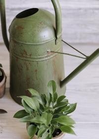 Лейка садовая металлическая старинная TG239 Esschert Design фото.jpg