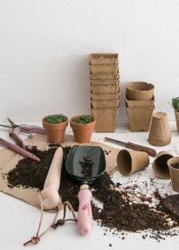 Конус посадочный для рассады и семян GardenGirl GGDIB картинка.jpg