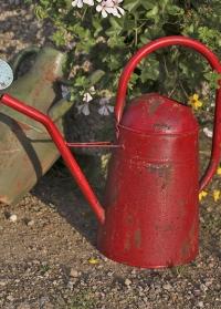 Винтажная садовая лейка для цветов 5 л Esschert Design фото.jpg