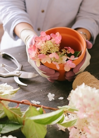Перчатки для флориста из бамбука  Bamboo Purple Briers фото.jpg