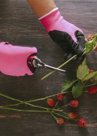 Ножницы флористические с яркими ручками Pink Florabrite Burgon and Ball фото.jpg