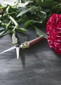Ножницы садовые для цветов GardenGirl TSS30.jpg
