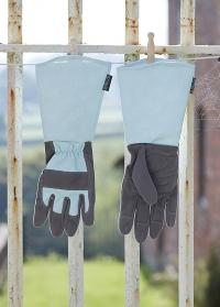 Перчатки  для роз длинные Burgon Ball фото.jpg