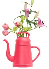Лейка кофейник для цветов 12 л Lungo Pink Xala фото.jpg