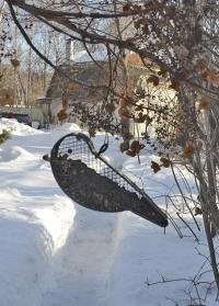 Оригинальная кормушка для птиц FB427 Esschert Design фото.jpg