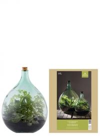 Террариум закрытый для растений бутылка AGG49 Esschert Design фото