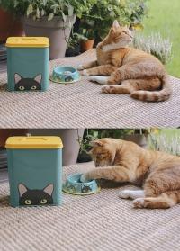 Металлическая миска для кормления кошек Doris Cat Bowl Creaturewares Burgon Ball фото