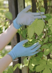 Перчатки тонкие для цветов и работы в саду Blue Lagoon Colors AJS-Blackfox фото