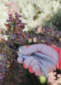 Садовые перчатки с нитрилом флористические Colors AJS Blackfox фото.jpg