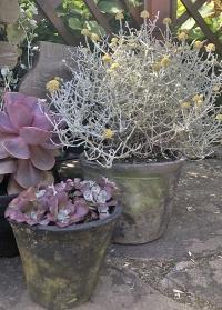 Горшок для цветов из серой терракоты с патиной AT33 Esschert Design фото