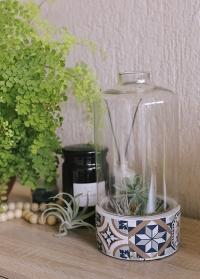 Декоративное кашпо для суккулентов со стеклянным колпаком Portuguese AC180 Esschert Design фото