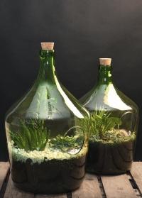 Стильные флорариумы бутылки для растений Esschert Design фото.jpg