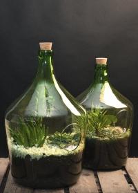 Флорариум стеклянный для растений бутылка 10 литров AGG66 Esschert Design фото