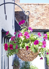 Подвесное плетеное кашпо из искусственного ротанга для ампельных цветов 7 литров Deco Smart Garden фото