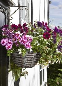 Подвесное кашпо для цветов плетеное из искусственного ротанга Pinto Smart Garden фото