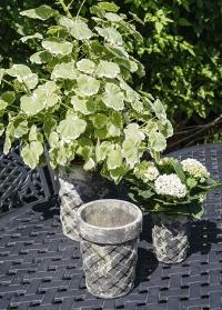 Набор винтажных горшков для цветов из состаренной керамики Aged Ceramic AC147 от Esschert Design фото