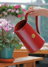 Металлический кувшин для полива цветов Classic Burgundy 9222-BUR Haws Великобритания фото